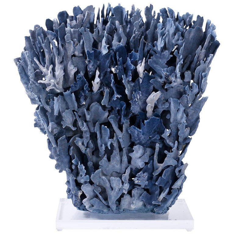 Large Blue Coral Sculpture Mounted on Lucite For Sale