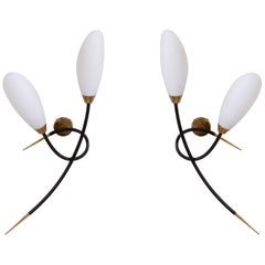 Pair of 1950s Wall Lamps by Maison Arlus