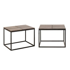 Pair of Petrified Wood Top Modern Style Coffee Tables