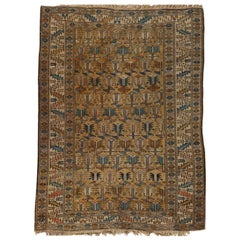 Antique Caucasian Shirvan Rug, circa 1880