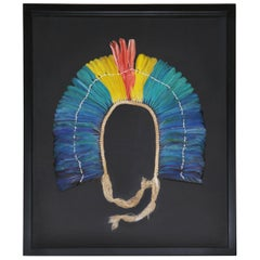 Kayapo 1 Headdress with Natural Feathers