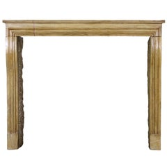 French Small Antique Hard Limestone Designed by Nature Fireplace Surround