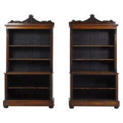 Pair of English Rosewood Bookcases
