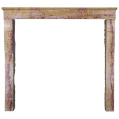 19th Century French Designed by Nature Stone Antique Fireplace Surround