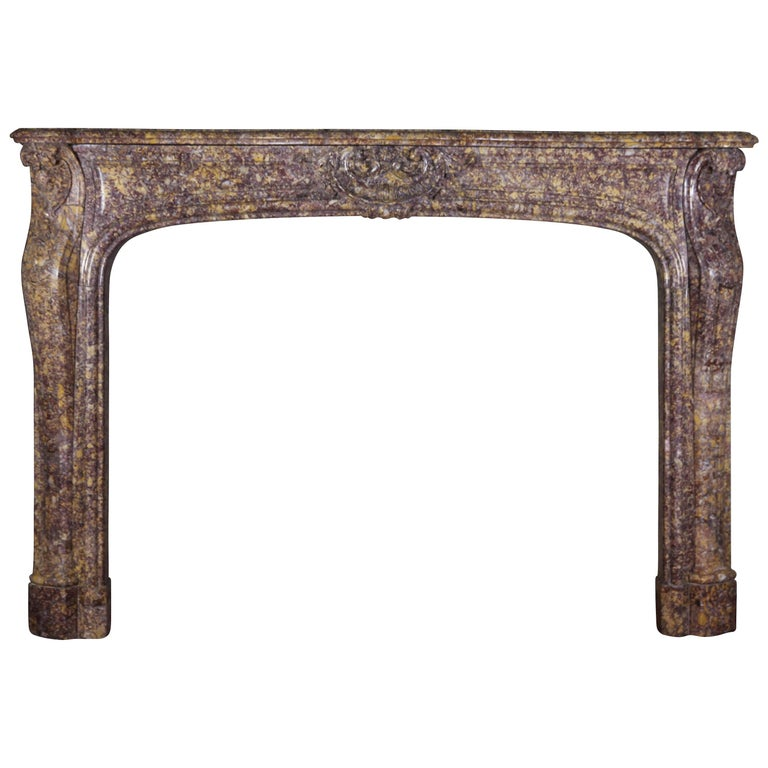 19th Century Brocatelle Marble French Interior Antique Fireplace Surround For Sale