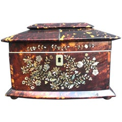 19th Century Regency Tortoiseshell and Mother of Pearl Tea Caddy Box