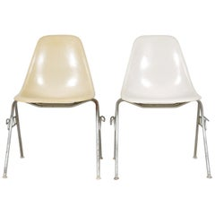 Pair of Vintage Mid Century Eames for Herman Miller DSS Fiberglass Shell Chairs