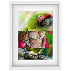 "Parrot Rihanna Carnival Naropinosa, ""Untitled"" Digital Collage, Spain, 2019"