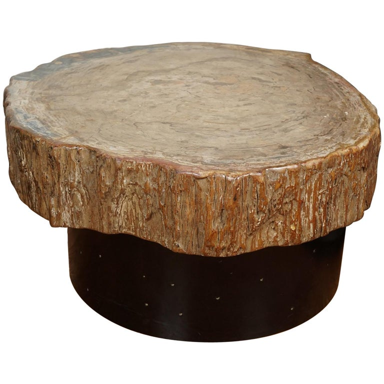 Petrified Wood Cocktail Table in the Style of Ado Chale For Sale