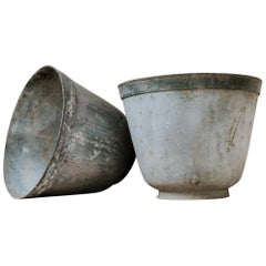 Pair of 19th Century French Zinc/Metal Jardinières or Planters