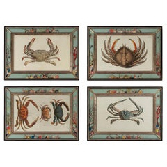Set of Four Frames, Glass and Silvered Wood, circa 1970, France
