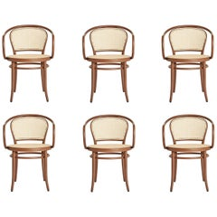 Set of 6 Rattan Dining Chairs in Nougat Brown