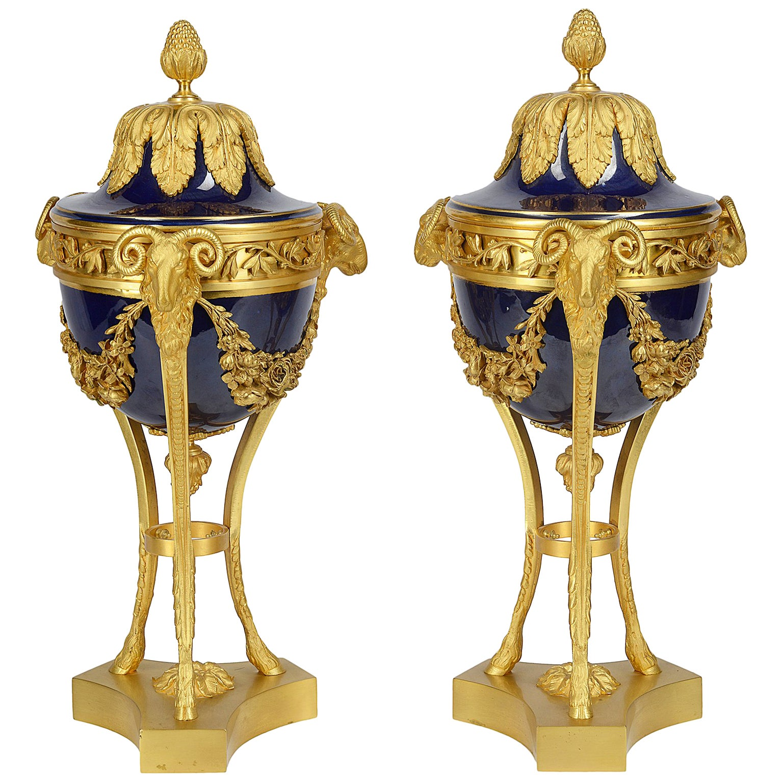Pair Sevres Style Porcelain and Ormolu Urns