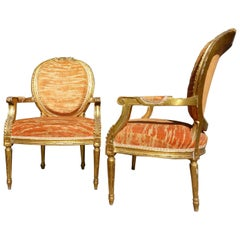 20th Century Louis Seize Gilded Chairs