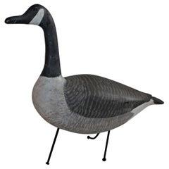 Folky Canadian Goose on Iron Feet