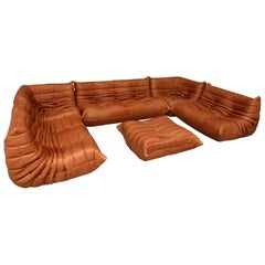 Large Set of Togo by Michel Ducaroy for Ligne Roset in Funky Full Grain Leather
