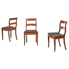 Set of 3 Karl Johan Style Sidechairs with Horsehair Seat, Sweden, 19th Century