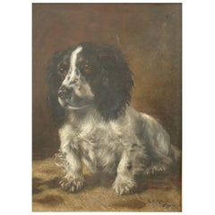 Painting of a Spaniel by Hugh Blyth Millar, Dated 1912