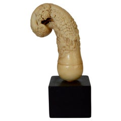 Early Victorian Carved Bone Cane Handle on Ebony Base