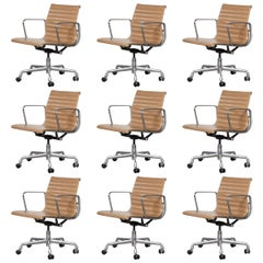 Multiple Eames Management Office Chair in Cognac Leather for Herman Miller