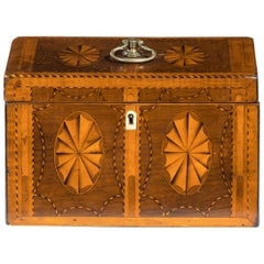 Georgian Harewood and Marquetry Inlaid Tea Caddy