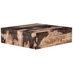 Square Center or Coffee Table, Petrified Wood