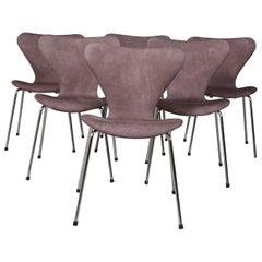 Arne Jacobsen Dining Chair, Model ''Syveren'' 3107, Nubuck Semi Aniline Leather