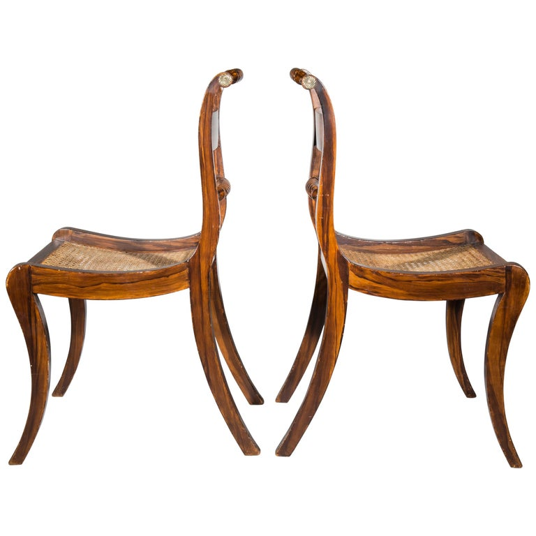 Pair of Regency Faux-Bois Painted Klismos Chairs For Sale