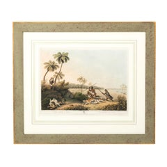 Set of Four English Prints of the West Indies