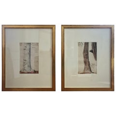 Pair of Charles De Wolf Brownell Watercolors