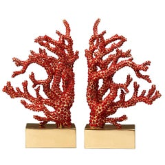 Red Coral Bookend Set of 2 with Natural Coral