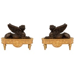Pair of French 19th Century Neoclassical Style Bronze and Ormolu Andirons