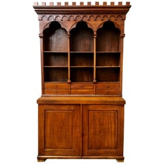 Swedish 19th Century Library or Specimen Cabinet, Provenance to Lund, Sweden