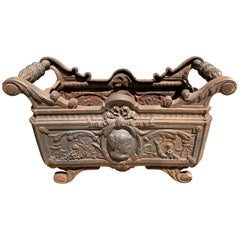 19th Century French Cast Iron Planter