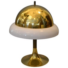 1950s Mid-Century Modern Italian Brass and Plastic Table Lamp