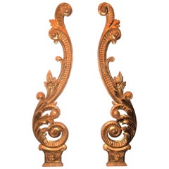 Pair of Tall Carved Louis XV Style Giltwood Boiserie Scrolls or Wall Appliques
