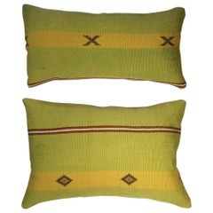 Pair of Cactus Silk Pillows