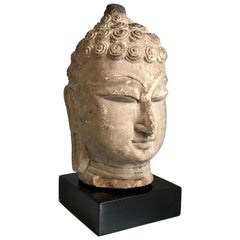 Thai Buddha Head, Ayutthaya Period
