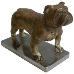 Antique Vienna Cold Painted Bronze Boxer Dog circa 1900, Car Mascot