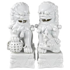 Pair of Foo Dogs in Blanc de Chine, Italy, 1960s