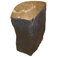 Andrianna Shamaris Fragment Petrified Wood Side Table