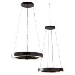 RENG  Hilo I  Modernist Suspension Light Ring LED Light