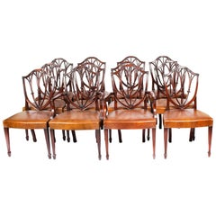 Antique Set 12 English Mahogany Hepplewhite Dining Chairs 19th Century