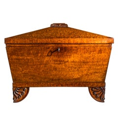 Regency Greek Revival Box or Wine Cooler in the Manner of Thomas Hope