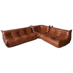 Whiskey Leather Togo Living Room Set by Michel Ducaroy for Ligne Roset, 1970s