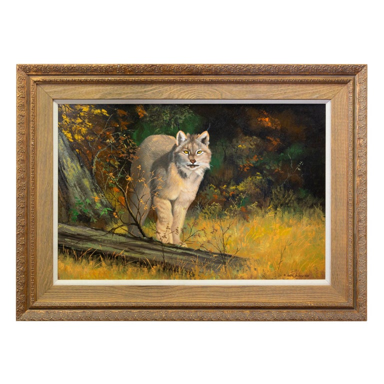 """""""American Lynx"""" Oil Painting by Peter Darro For Sale"""