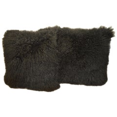 Pair of Black Large Curly Lamb's Wool Skin Made into a Pillows