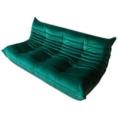 Togo 3-Seat Sofa in Bottle Green Velvet by Michel Ducaroy for Ligne Roset