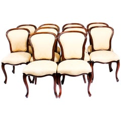Antique Set of 10 Louis Revival Cabriole Dining Chairs 19th Century