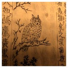 Bird Watchers Guide:  Rare Japanese Antique Woodblock Book, 1712